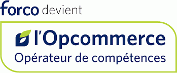 OPCOMMERCE OPCO COMMERCE